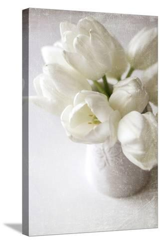 Vanishing in the White Elegance-Sarah Gardner-Stretched Canvas Print