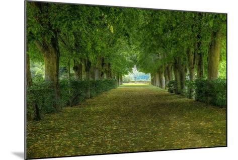 French Gardens-Shelley Lake-Mounted Premium Giclee Print