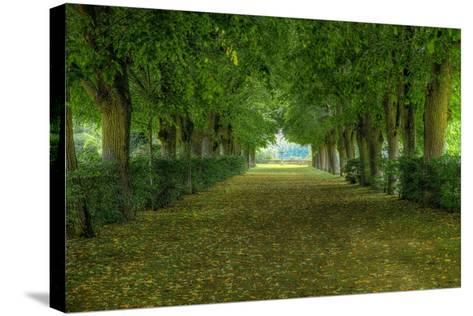 French Gardens-Shelley Lake-Stretched Canvas Print
