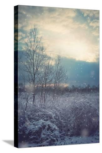 A Winter's Day-Kelly Poynter-Stretched Canvas Print