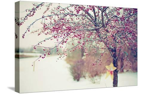 Winter Berries I-Kelly Poynter-Stretched Canvas Print