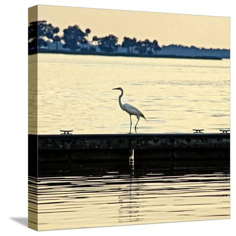 Along the Pier-Bruce Nawrocke-Stretched Canvas Print