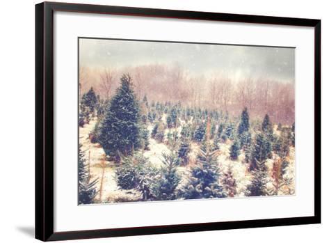 Nature's Beauty-Kelly Poynter-Framed Art Print