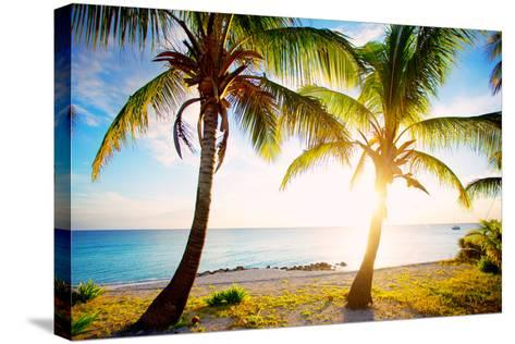 New Bimini-Susan Bryant-Stretched Canvas Print