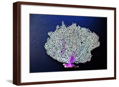 Coral on Navy II-Jairo Rodriguez-Framed Art Print