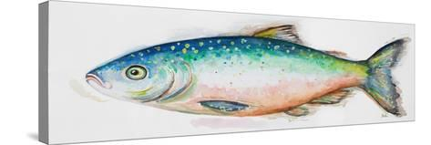 Watercolor Fish I-Patrcia Pinto-Stretched Canvas Print