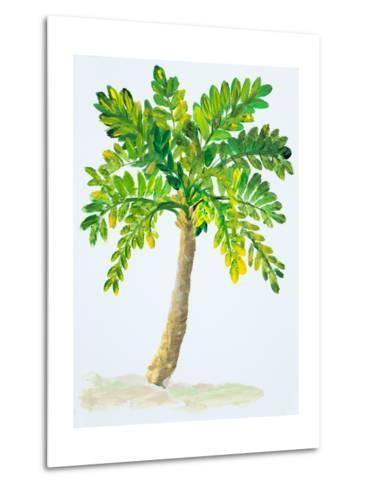 Palm Days IV-Julie DeRice-Metal Print