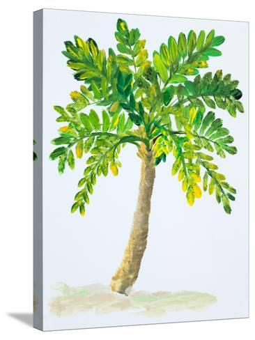 Palm Days IV-Julie DeRice-Stretched Canvas Print