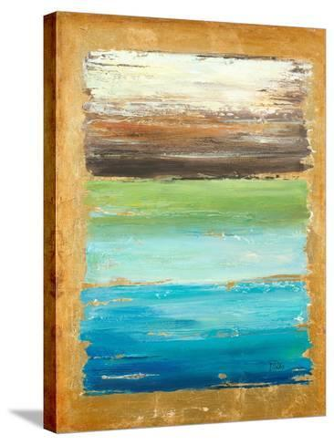 The Palette-Patricia Pinto-Stretched Canvas Print