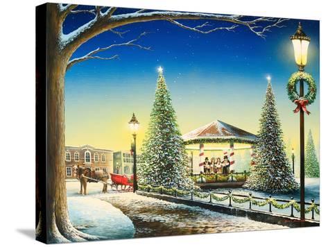Tis the Season-Bruce Nawrocke-Stretched Canvas Print