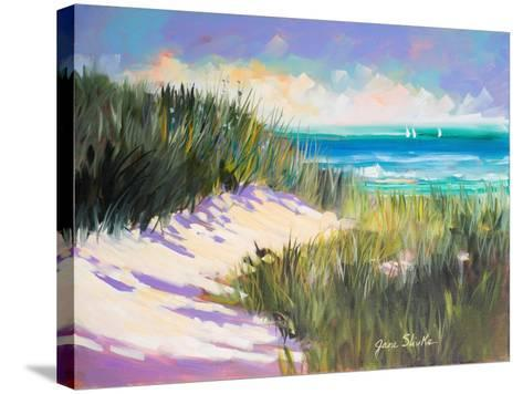 Seagrass Shore-Jane Slivka-Stretched Canvas Print