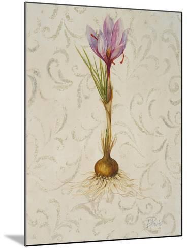 Botanica III-Patricia Pinto-Mounted Art Print