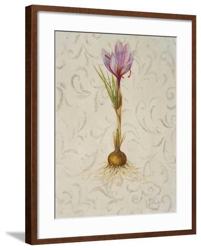 Botanica III-Patricia Pinto-Framed Art Print