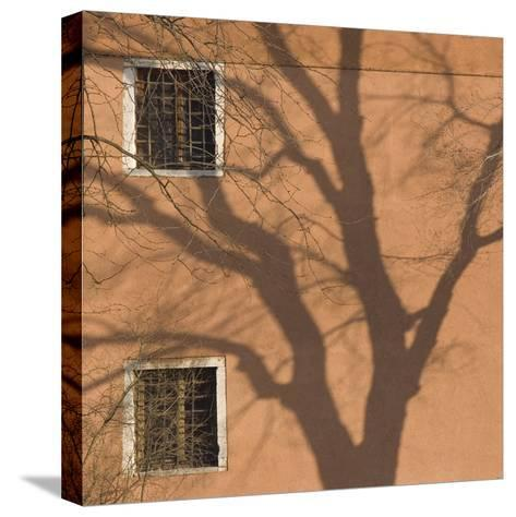 Shadow of Tree on Orange Venice Building Exterior-Mike Burton-Stretched Canvas Print