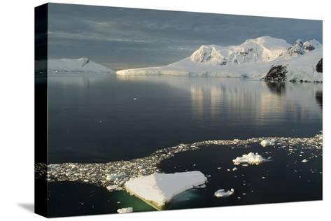 Paradise Harbor, Antarctica-Natalie Tepper-Stretched Canvas Print