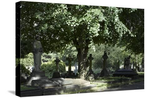 Trees and Graves at Brompton Cemetery, Kensington, London-Richard Bryant-Stretched Canvas Print