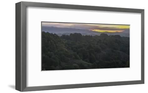 Oakland Redwood Park, East View Morning Panorama 2-Henri Silberman-Framed Art Print