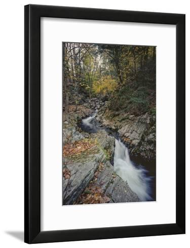 Woodland Stream Autumn Leaves-Henri Silberman-Framed Art Print