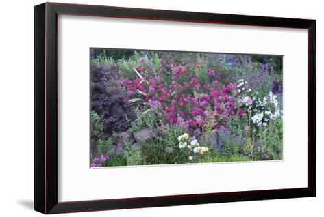 Oakland Spring Garden-Henri Silberman-Framed Art Print
