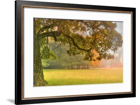 Foliage-Viviane Fedieu Daniel-Framed Art Print