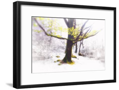Ashes of Time-Viviane Fedieu Daniel-Framed Art Print