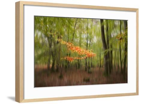 Revelation-Viviane Fedieu Daniel-Framed Art Print