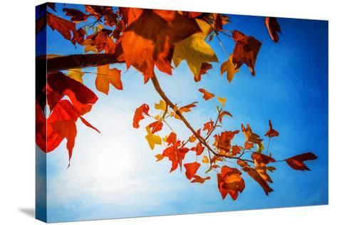 Audacious Autumn-Philippe Sainte-Laudy-Stretched Canvas Print