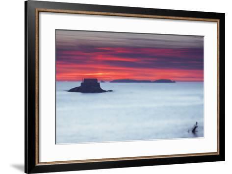 Last Swim-Viviane Fedieu Daniel-Framed Art Print