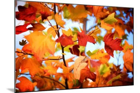 Autumn Paintography-Philippe Sainte-Laudy-Mounted Photographic Print