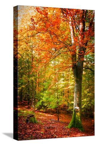 Poets of the Fall-Philippe Sainte-Laudy-Stretched Canvas Print
