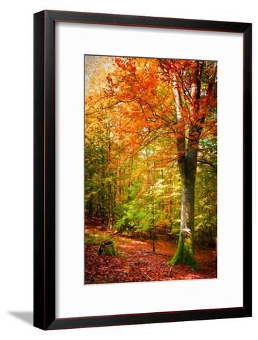Poets of the Fall-Philippe Sainte-Laudy-Framed Art Print