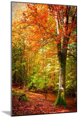 Poets of the Fall-Philippe Sainte-Laudy-Mounted Photographic Print