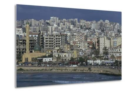 View of the City--Metal Print