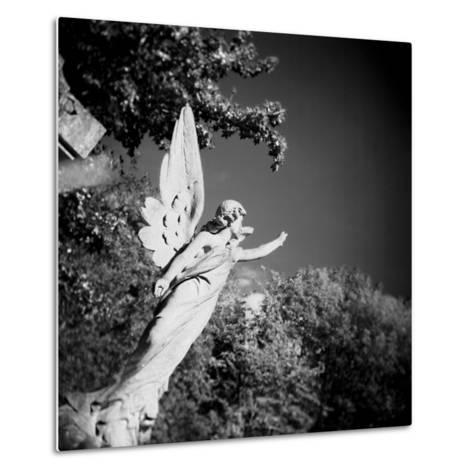 Whitescape-Craig Roberts-Metal Print