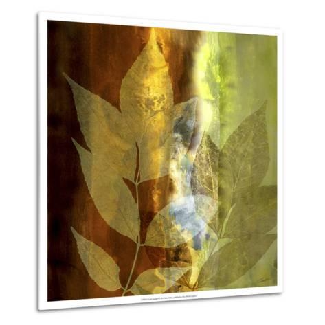 Lush Sunlight-John Butler-Metal Print