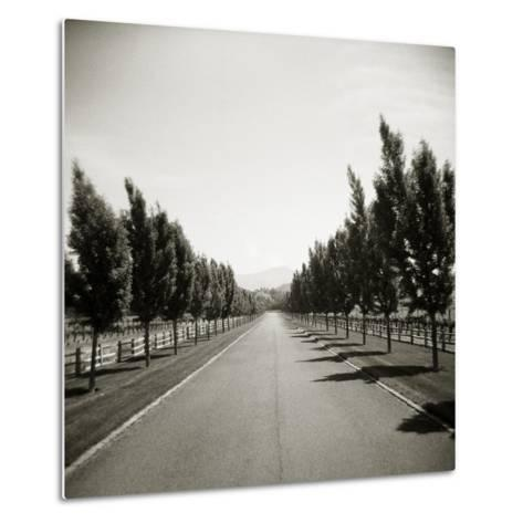 Napa Valley-John Kuss-Metal Print