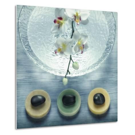 Bowl of Water and Soaps--Metal Print