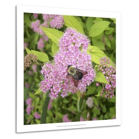 Flight of the Bumble Bee I-Alicia Ludwig-Metal Print