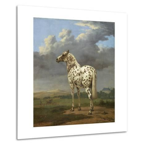 The Piebald Horse by Paulus Potter--Metal Print