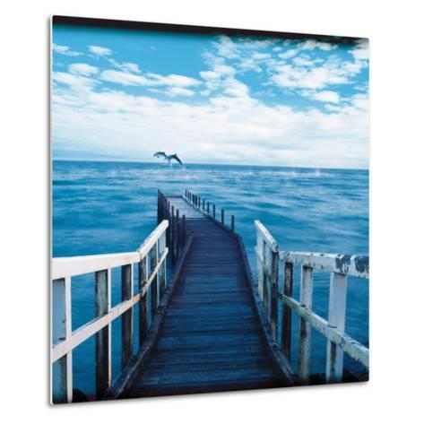 Pier and Dolphins-Colin Anderson-Metal Print