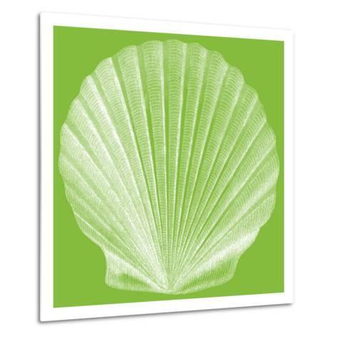 Saturated Shells II-Vision Studio-Metal Print