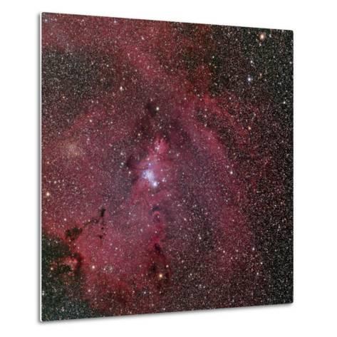 NGC 2264, the Cone and Christmas Tree Nebula-Stocktrek Images-Metal Print