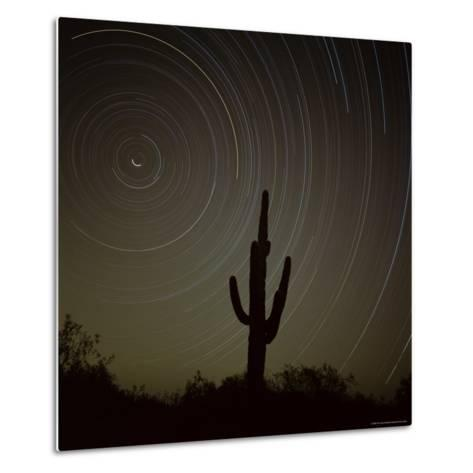 Star Trek Over Cacti, Tracing Stars as They Move Round North Star, Tucson, Arizona, USA-Tony Gervis-Metal Print