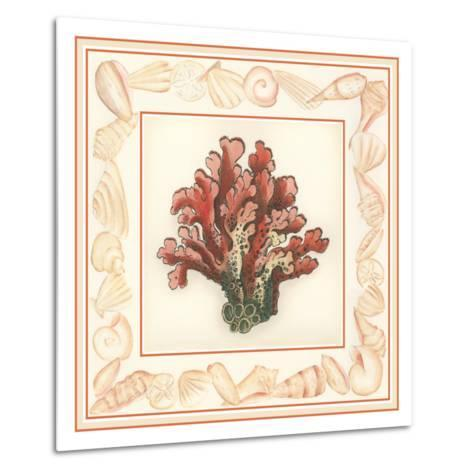 Coral with Shell Border IV-Vision Studio-Metal Print