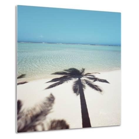 Shadow of Palm Tree on a Beach--Metal Print