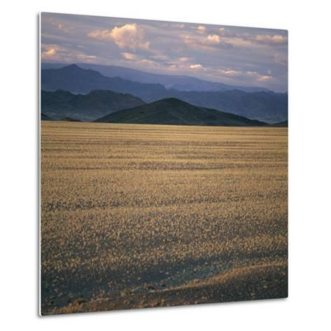 View of the Beginning of the Altai Range From the Gobi Desert-David Pluth-Metal Print