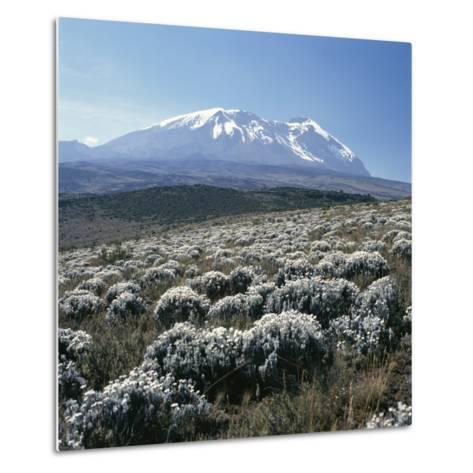 Mount Kilimanjaro, the Breach Wall, as Seen From Shira Plateau-David Pluth-Metal Print