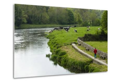 Countryside, County Kilkenny, Leinster, Republic of Ireland (Eire), Europe-Nico Tondini-Metal Print