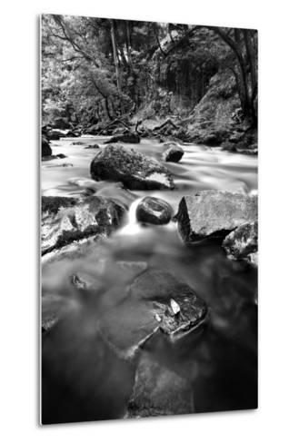 Gloss-Craig Howarth-Metal Print