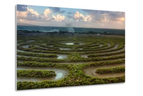 Scene at Kapalua Labyrinth Maui-Vincent James-Metal Print